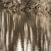 Reflections on Spring River.