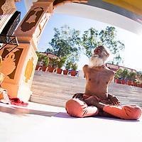 Yogananada