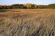 A look at a small family farm in Waushara County, Wisconsin.