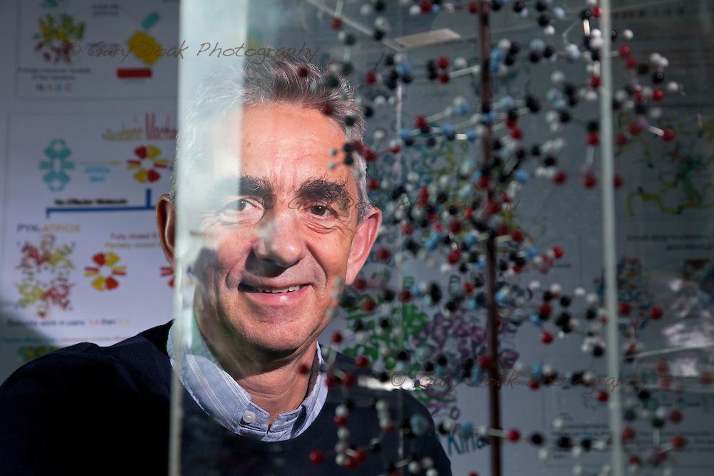 Prof. Malcolm Walkinshaw, Chair of Structural Biochemistry .School of Biological Sciences .University of Edinburgh