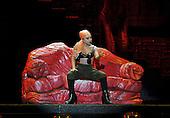 11/30/2012 - Lady Gaga Tour - South Africa