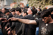 A Shiite religious procession on the 10th day of the holy Islamic month of Muharram in New Delhi, India...Shiites commemorated Ashura across Pakistan, beating their chests and flailing themselves with chains to commemorate the killing of Imam Hussein by armies of the Sunni caliph Yazid at the Battle of Kerbala on 10th October, 680AD.