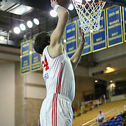 Delaware 87ers Center Kyrylo Fesenko (34) drives towards the basket in the first half of a NBA D-league regular season basketball game between the Delaware 87ers (76ers) and the Iowa Energy Tuesday, Jan 14, 2014 at The Bob Carpenter Sports Convocation Center, Newark, DE