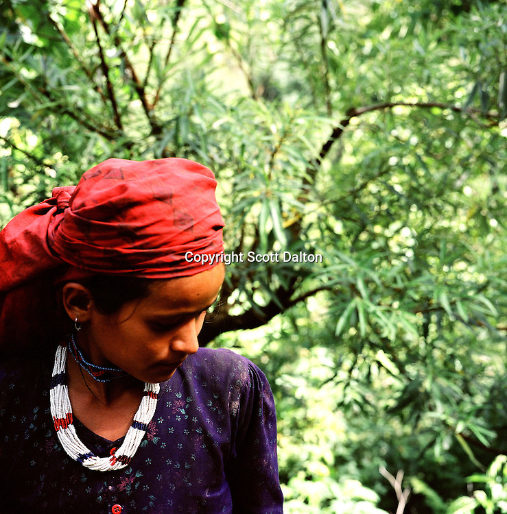 A young peasant girl in a remote part of western Nepal controlled by Maoist rebels. (Photo/Scott Dalton)
