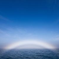 Norway, Svalbard, Spitsbergen Island, Midday sun creates ?Fog Bow? in North Atlantic on summer morning