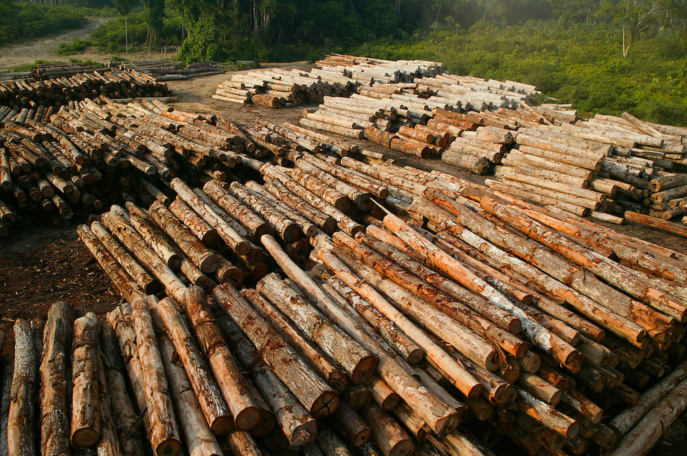 Dec. 8, 2003: A log sorting yard seized by the Ibama Police in the Porto de Moz region of Para State, Brazil. ©Daniel Beltra