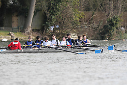 2012.02.25 Reading University Head 2012. The River Thames. Division 1. Dulwich College Boat Club J15A 8+