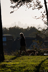 Hampstead Heath, London, October 28th 2014. A dog walker enjoys the early morning sunshine on Hampstead heath.